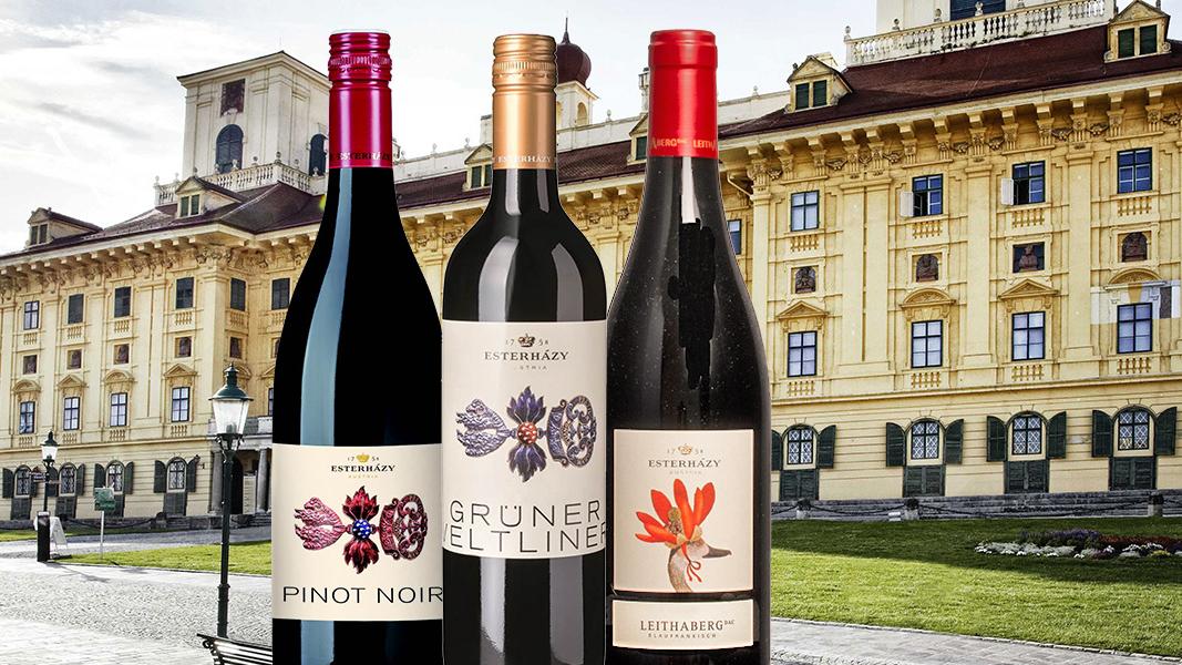 39 Esterhazy Adelijk goede wijnen