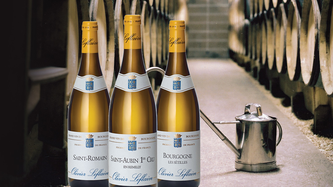 58 Olivier Leflaives verborgen Bourgogne schatten