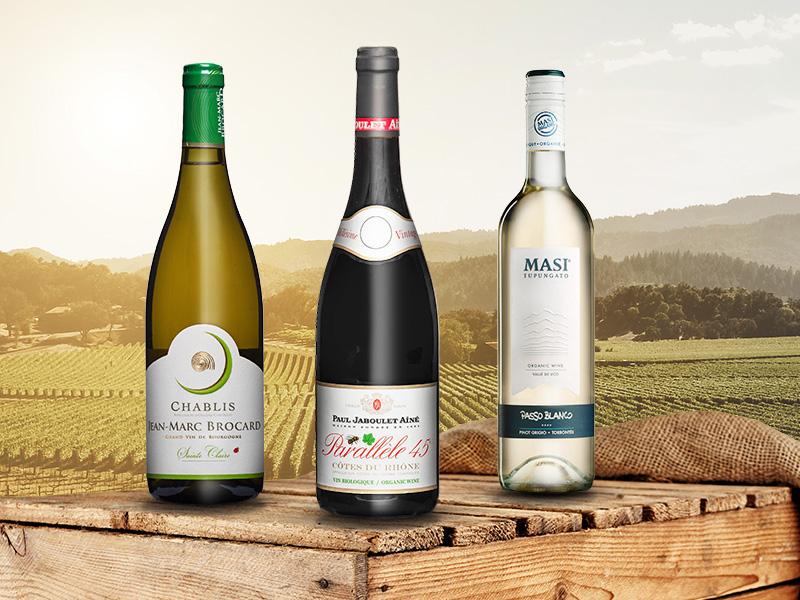 https://winelist.nl/media/cache/16x9_thumb/media/image/article-overview/blogbanner-bio-wijnen.jpg