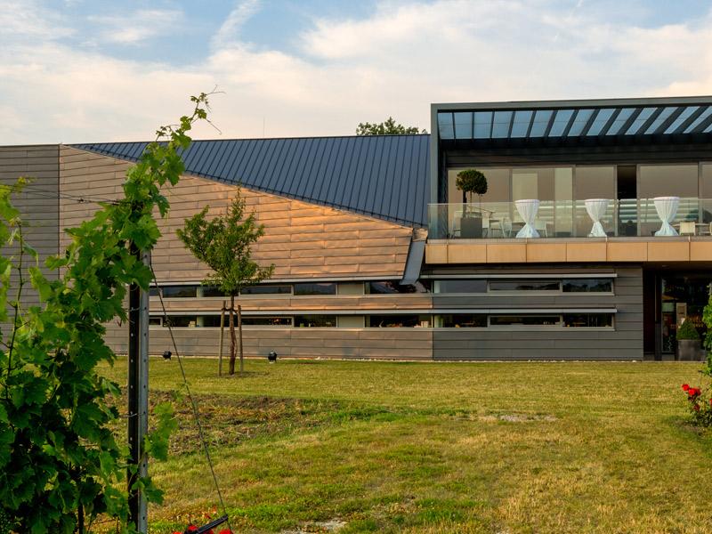 https://winelist.nl/media/cache/16x9_thumb/media/image/brand-banner/Esterhazy_wijnhuis.jpg