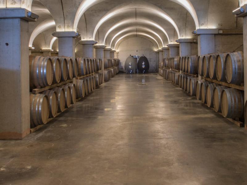 https://winelist.nl/media/cache/16x9_thumb/media/image/brand-banner/Fuedomaccari_wijnkelder.jpg