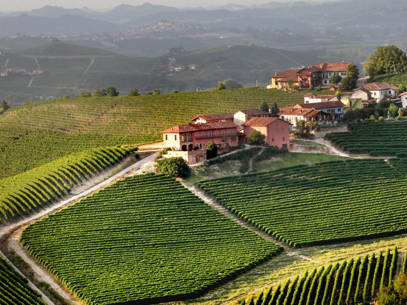 https://winelist.nl/media/cache/16x9_thumb/media/image/brand-banner/Prunotto_winery.jpg