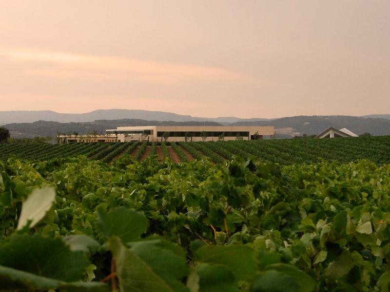 https://winelist.nl/media/cache/16x9_thumb/media/image/brand-banner/Vilarnau_wijnestate.jpg