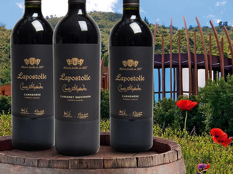 https://winelist.nl/media/cache/16x9_thumb/media/image/brand-cta/75-Wereldklasse-wijnen-van-Lapostolle.jpg