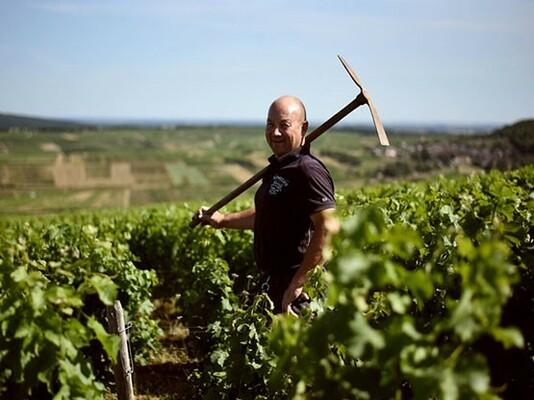 Wijnmakers Domaine Fournier